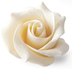 White chocolate wedding rose